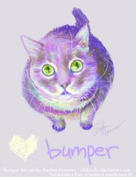Bumper on Facebook
