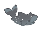 Fluffy Shark - Single - CLOSED