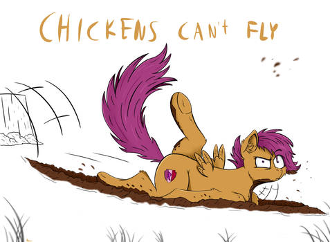 Chickens can't fly.