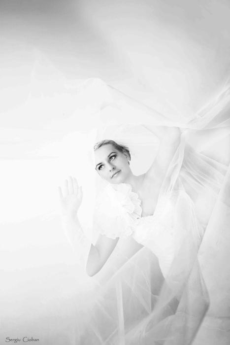 wedd by Sssssergiu