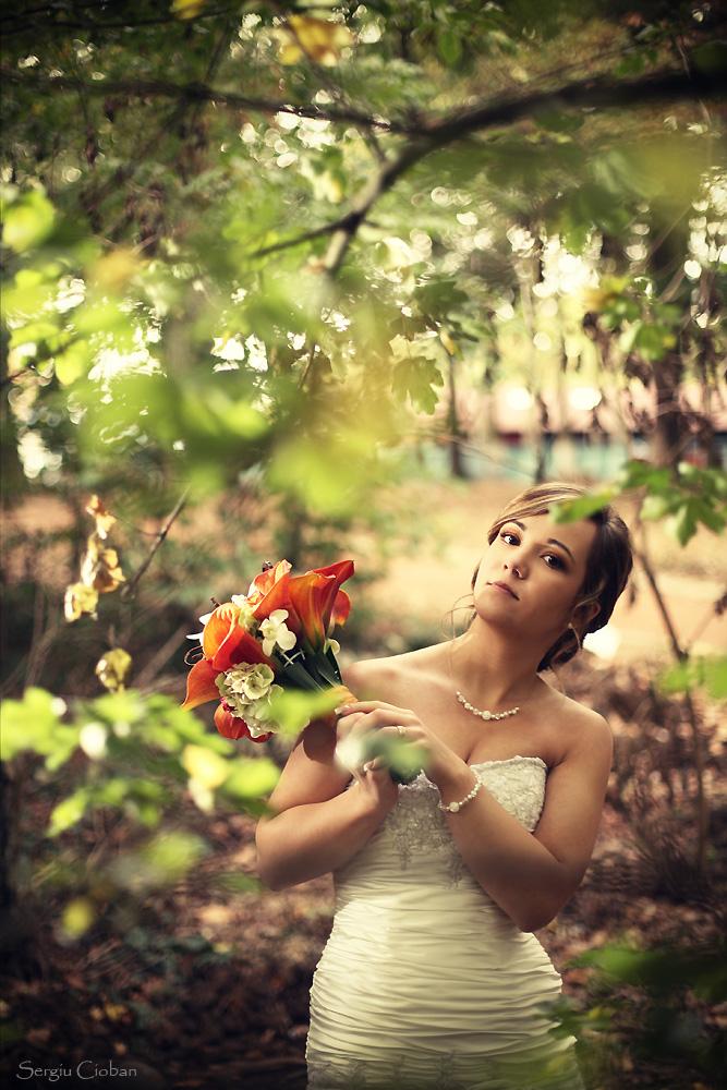 Romanian Wedding by Sssssergiu