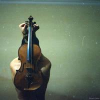 violin ... by Sssssergiu
