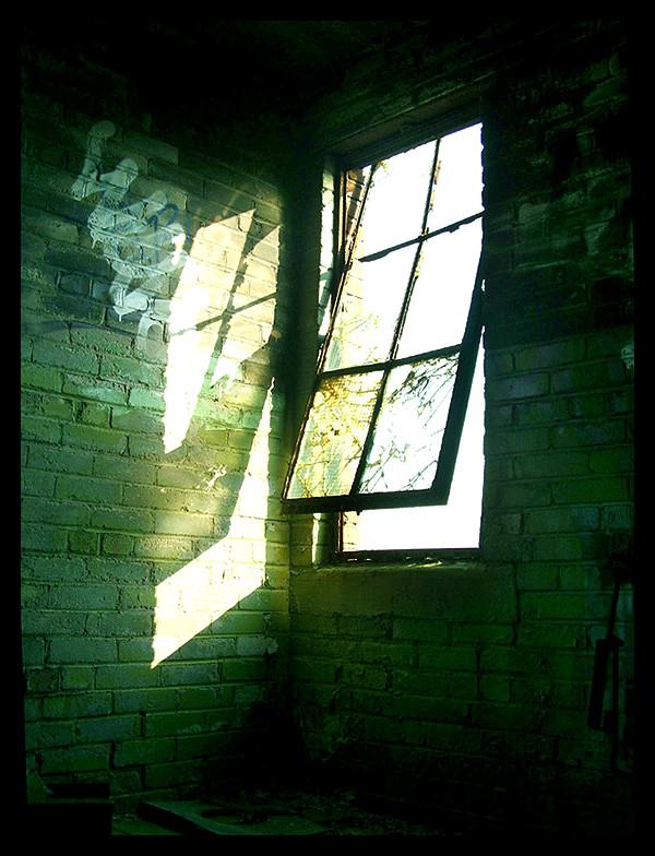 The window by jb00bs