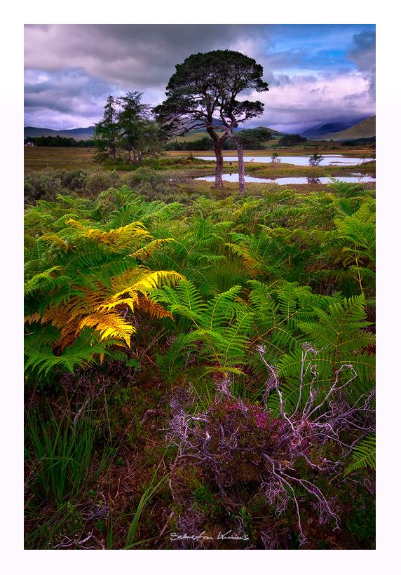 Loch Tulla by SebastianKraus