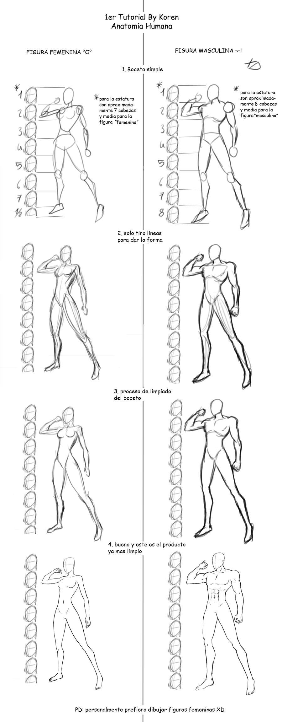 Tutorial Anatomia Humana by Koren-Leo on DeviantArt