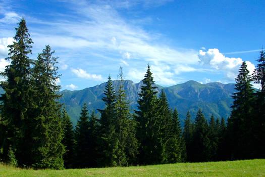 View from Gubalowka