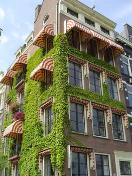 A house in Amsterdam