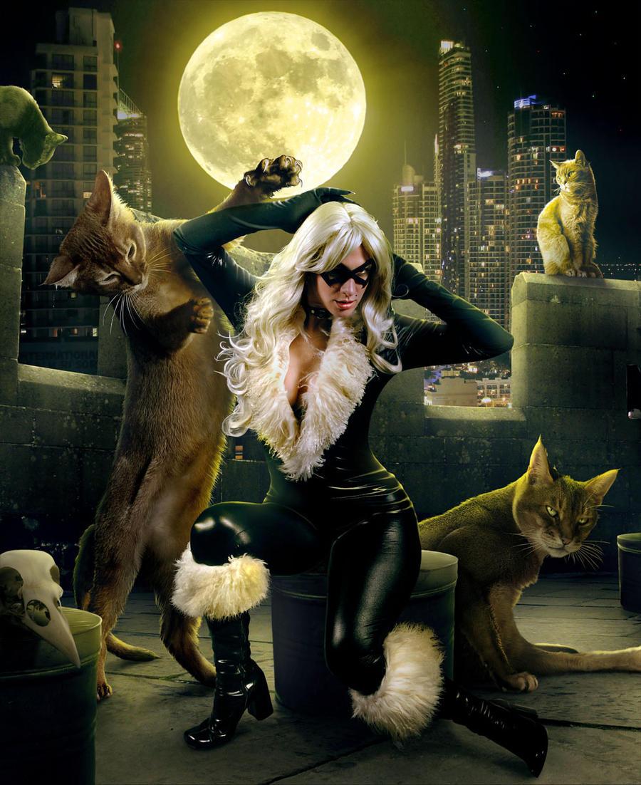 Beloved kitten by sasha-fantom
