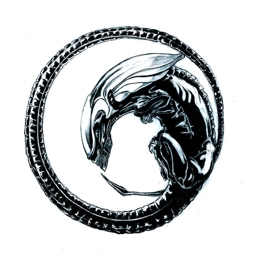 Predator Tattoo Designs