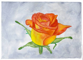 How To Paint a Rose in Gouache