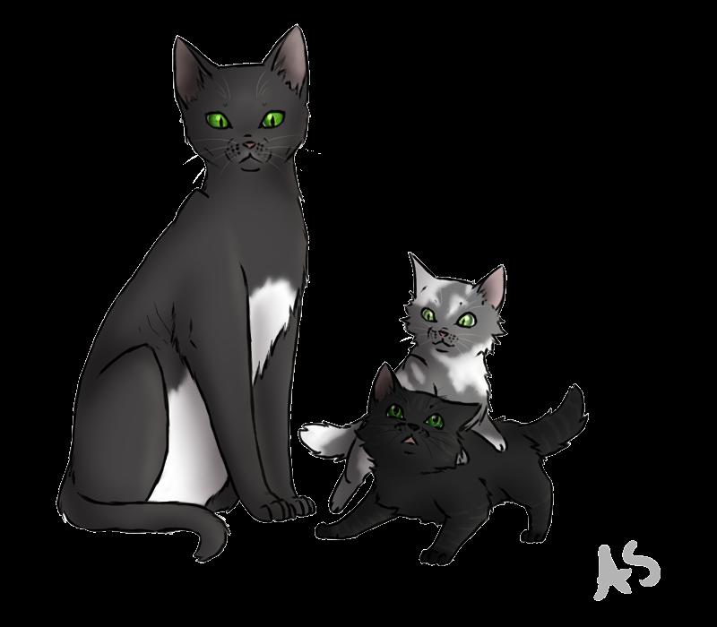 Warrior Cats Kit To Leader Bloodclan: Cedarstar's Kits By AnnMY On DeviantArt