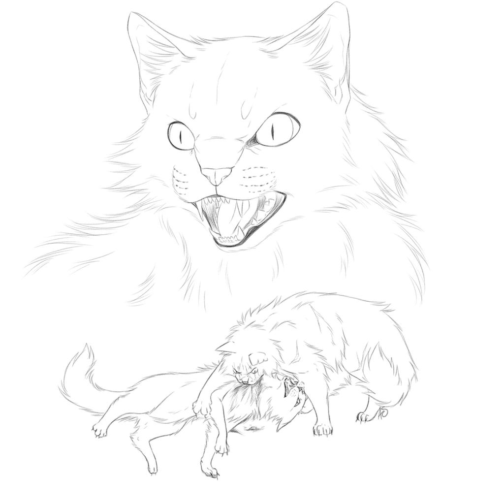 Warrior cats queen line art projects