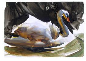 Swan by NathanFowkesArt