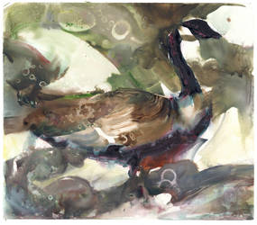 Goose! by NathanFowkesArt