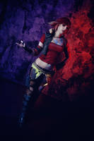 Borderlands 2 - The bandits call me the Firehawk by SorelAmy