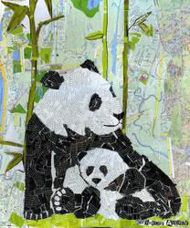 pandas by antibiopanda