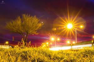 City Fireflies by VitoDesArts
