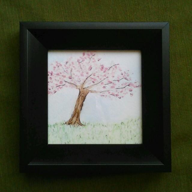 Cherry Blossom by Zednuga