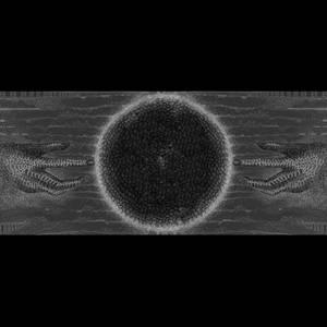 Dancing Deadlips - Song of the Flight (Cover Art) by Dancing-Deadlips