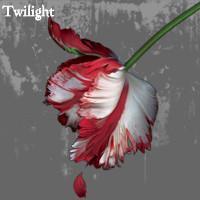 Twilight I.M Pic by Josu660