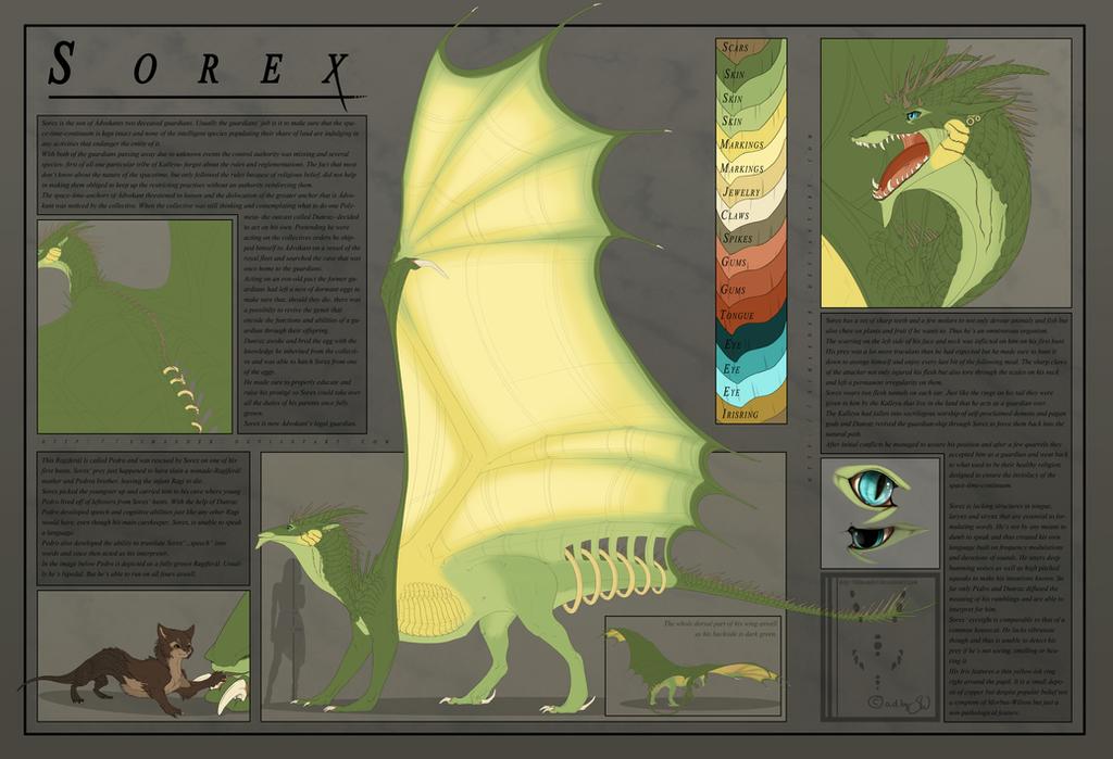 Sorex Reference Sheet by Syvaender