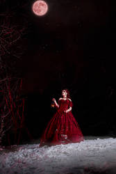 Sarah Chagal - Dance of the Vampires 9