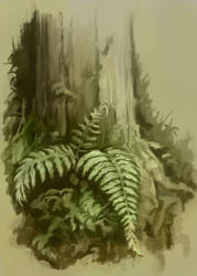 Plants [sketch]