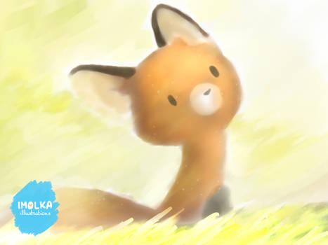 Mocha, the red fox