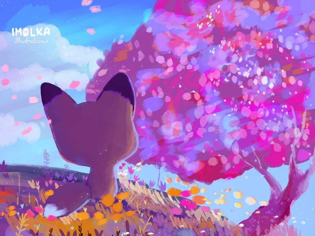 Cherry blossom by imolka
