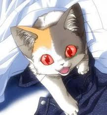 Cat Red Eyes by yelby