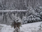 winter's mirror