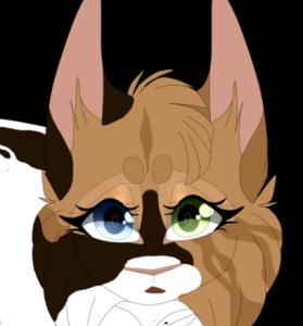 Yozora13's Profile Picture