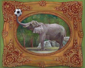 Elephants Love Soccer