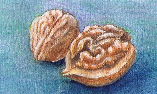 Goddess of the Walnut by johannachambers