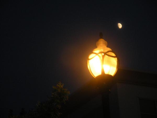 Streetlamp Diaries by Singinchic7