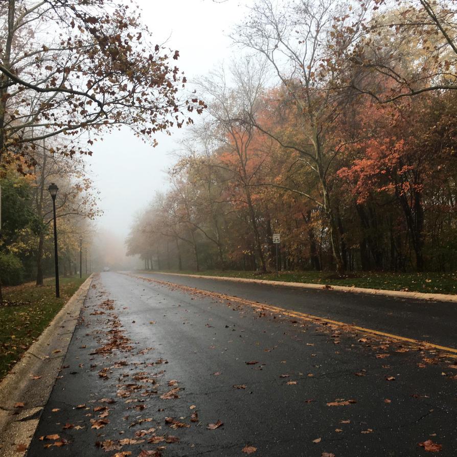 Autumn morning by Singinchic7