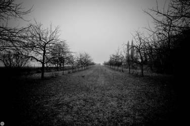 yesterday the land was dark I by gemini670
