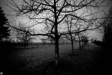 yesterday the land was dark II by gemini670