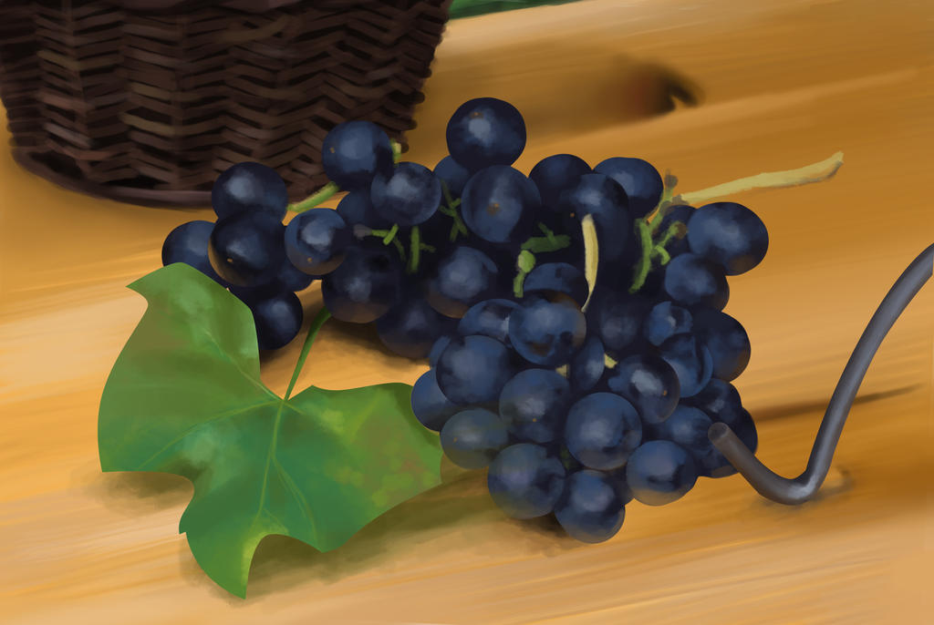 still life study - grapes by pur1n