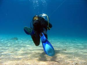 My First Underwater Photo