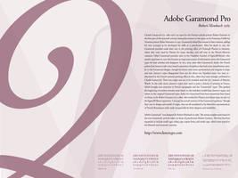 Type Study - AdobeGaramondPro by newklear