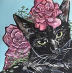 mini serie: cat nr.2 by LucyAnori