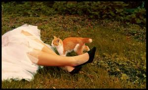 Autumn Kitty by whorer-movie