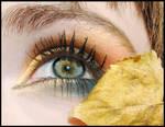 Eye of Autumn