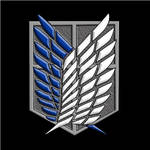 The Scouting Legion / Recon Corps / Survey Coprs by InWind