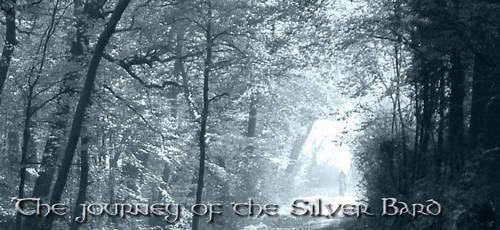 Webpage banner - Silver Bard by RhapsodyBrd