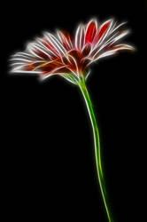 Glow Flow FX Flower by oNezzzART