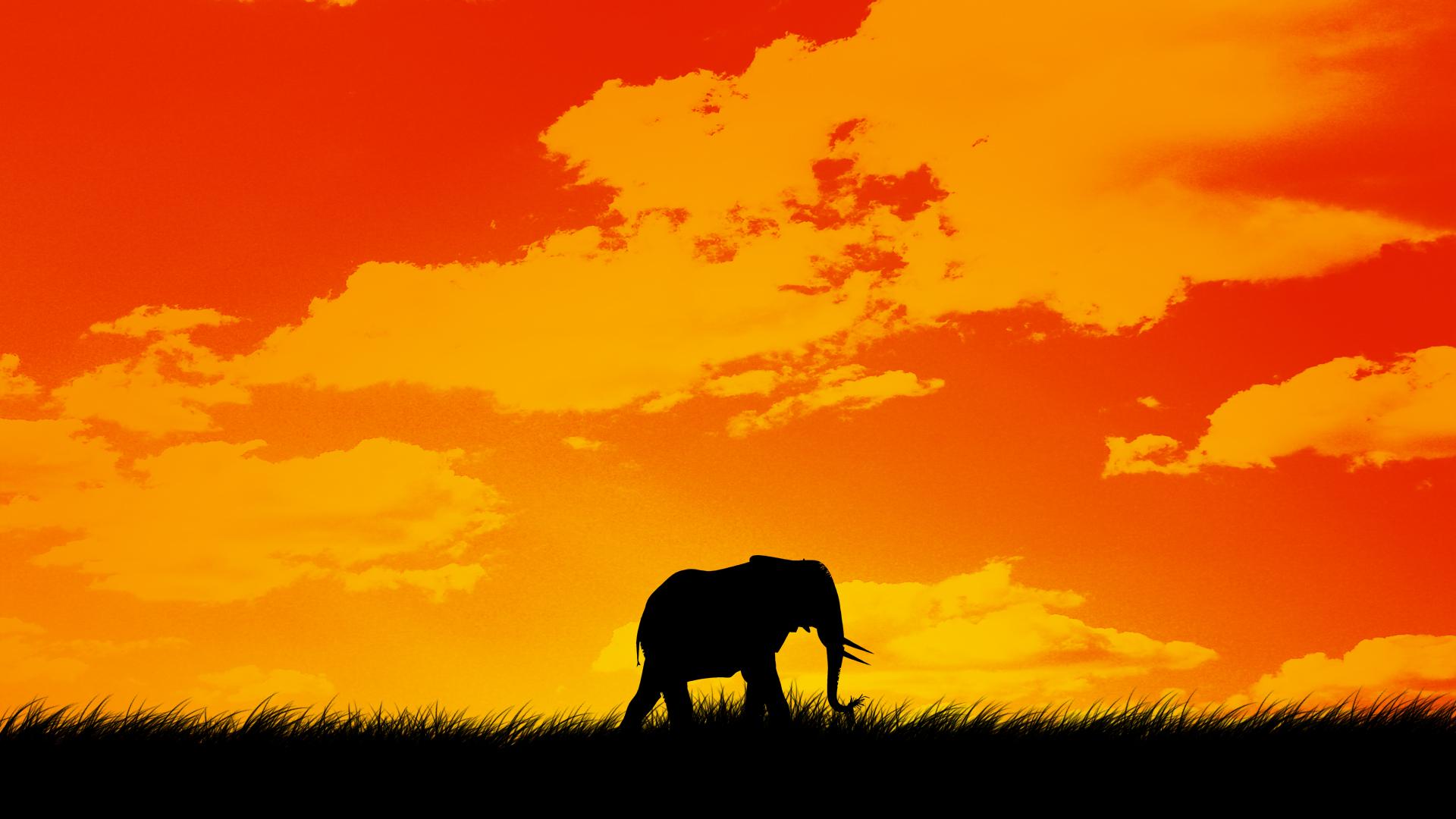 Elephantitis by Kalutica