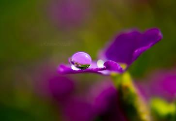 purple rain by RibbonBlack