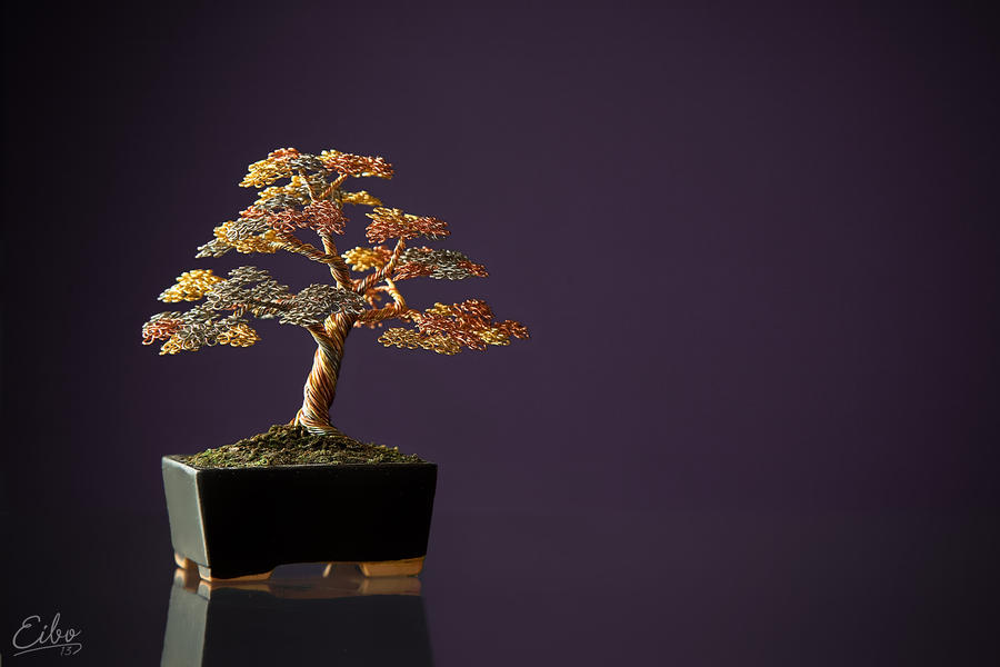 Bonsai 2 by Eibography